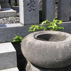 生前建墓【寿陵】